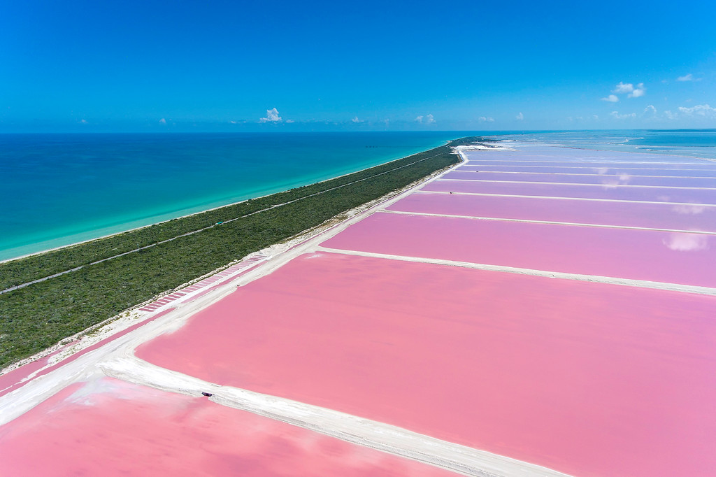 Pink Lakes Las Coloradas